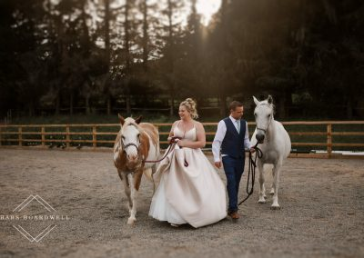 Micro family wedding at Cefn y Bedd