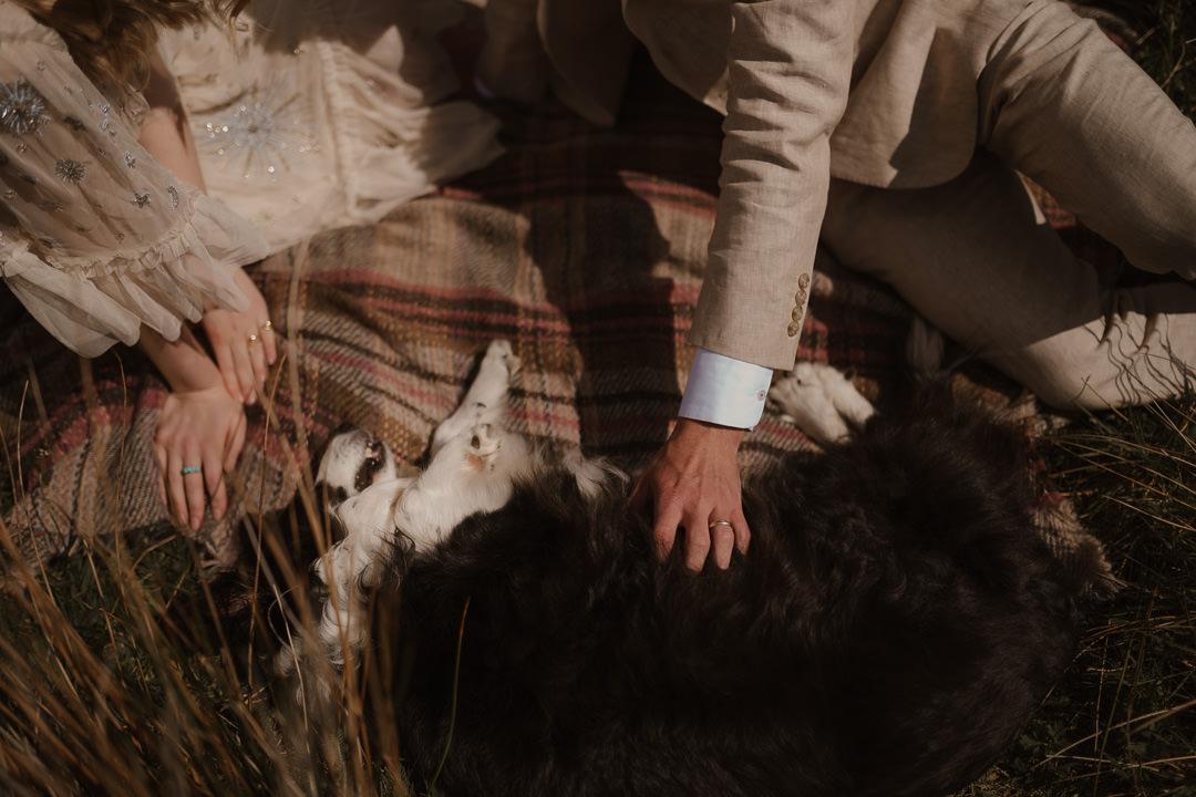 Pwllheli Elopement with dog & picnic