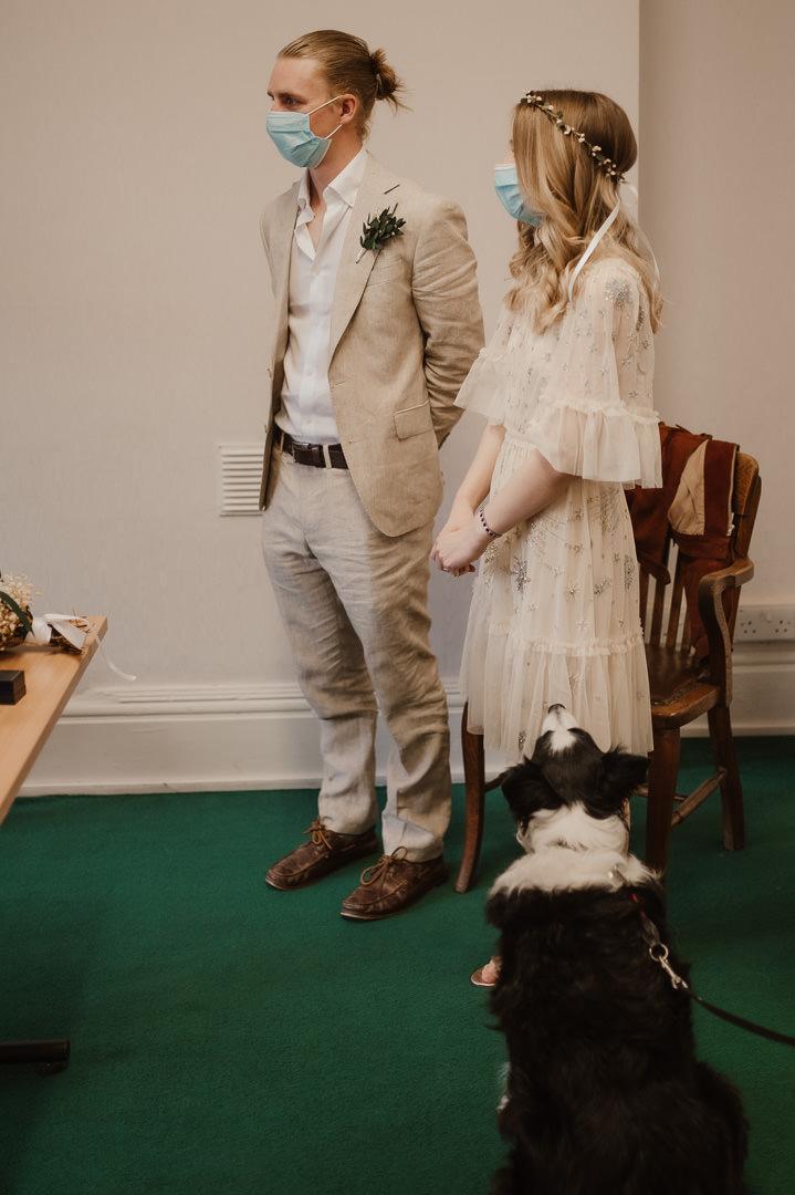 Pwllheli elopement with dog Wedding Photographer North Wales